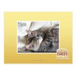 I has a u post card