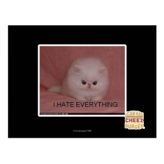 I hate everything postcard