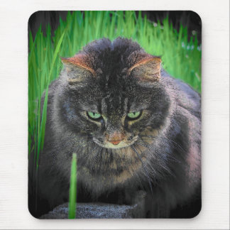 I hate that blade of grass mouse pad