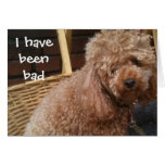 I HAVE BEEN BAD-BELATED BIRTHDAY GREETING CARD