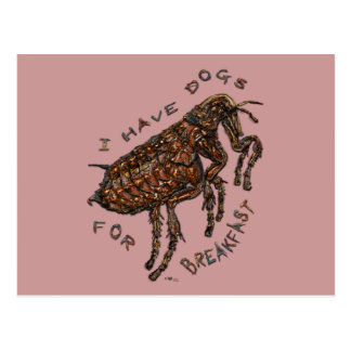 I Have Dogs for Breakfast Postcard