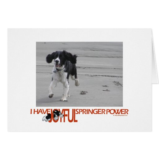 I Have Joyful Springer Power Customize With Photo Card