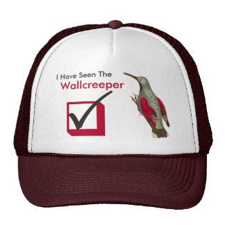 I Have Seen the Wallcreeper Birder's Check Box Trucker Hat
