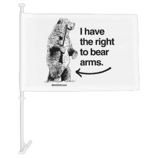 I HAVE THE RIGHT TO BARE ARMS CAR FLAG
