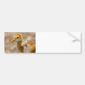 I Have Wings Car Bumper Sticker