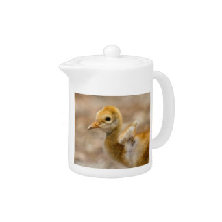 I Have Wings Teapot