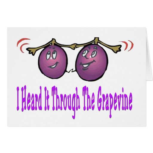 meaning of gravepine Define grapevine grapevine synonyms, grapevine pronunciation, grapevine  translation, english dictionary definition of grapevine n 1 a vine on which  grapes.