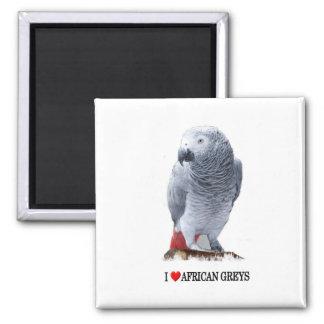 I heart African greys Fridge Magnet