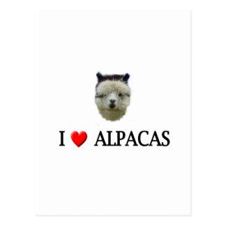 "I ""heart"" alpacas postcard"