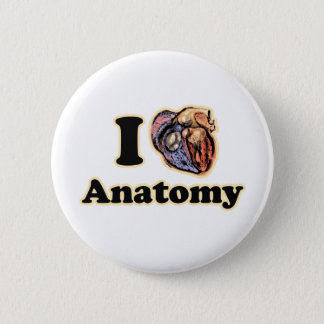 I heart Anatomy Science Super Geek Teacher Pinback Button