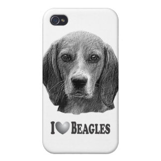I Heart Beagles with Beagle Portrait iPhone 4 Case