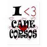 I Heart Cane Corsos Postcard