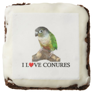 "I ""Heart"" Conures Chocolate Brownie"