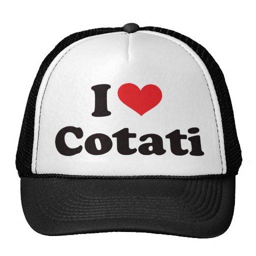 I Heart Cotati Mesh Hat