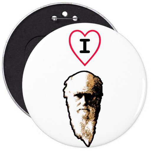 I Heart Darwin 6 Inch Round Button