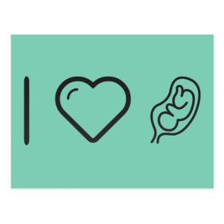 I Heart Fetus Insides Postcard