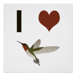 I heart Hummingbirds Poster