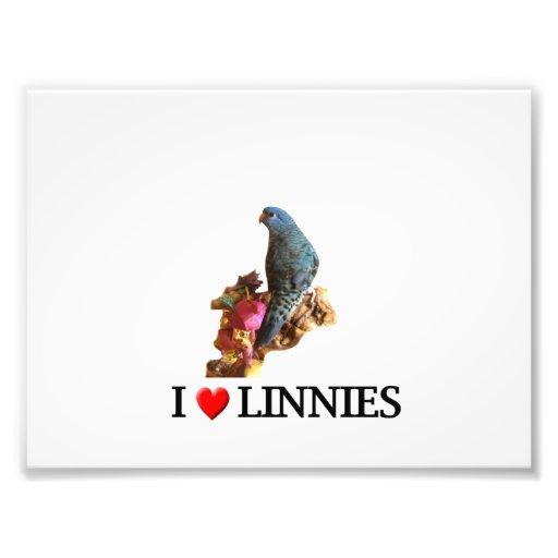 "I ""Heart"" Linnies Photo Print"