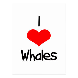 I Heart (Love) Whales Postcard