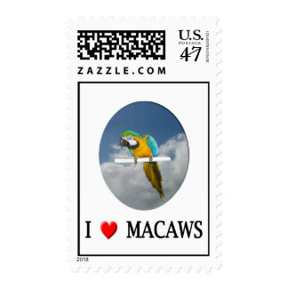 "I ""heart"" Macaws Postage Stamp"