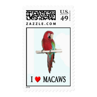 I heart macaws stamp