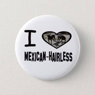 I heart Mexican-Hairless Pinback Button