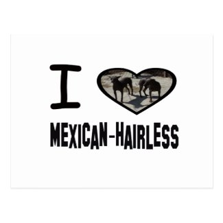 I heart Mexican-Hairless Postcard