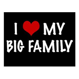 I Heart My Big Family Postcard