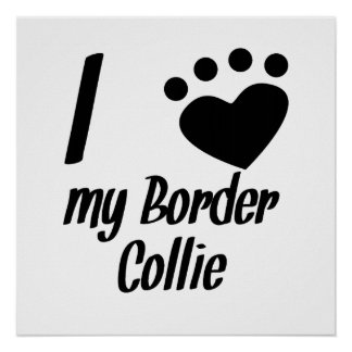 I Heart My Border Collie Poster