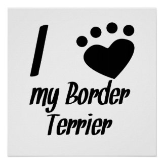 I Heart My Border Terrier Posters