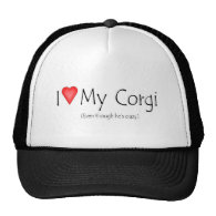 I heart my corgi (even though he's crazy) hats