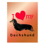 I Heart My Dachshund Post Card
