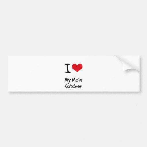 I heart My Mole Catcher Bumper Sticker