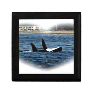 I heart Orcas Killer Whale Belly flop Gift Box