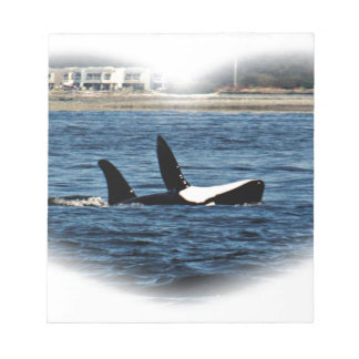 I heart Orcas Killer Whale Belly flop Scratch Pad