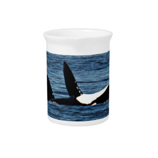 I heart Orcas Killer Whale Belly flop Drink Pitcher