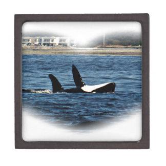 I heart Orcas Killer Whale Belly flop Premium Keepsake Box