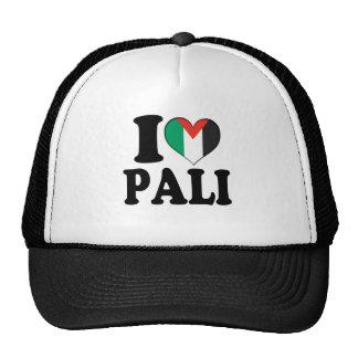 I Heart Palestine Trucker Hat