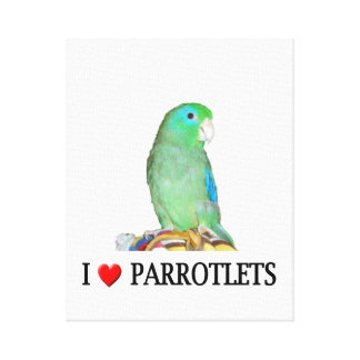 """I """"Heart"""" Parrotlets Wrapped Canvas"""