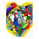 I heart parrots cute cartoon postcard