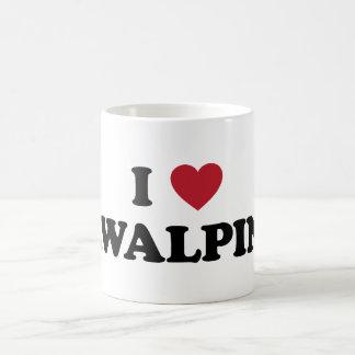 I Heart rawalpindi Pakistan Coffee Mug
