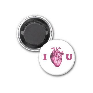 I Heart You Anatomical Heart - White & Pink Magnet
