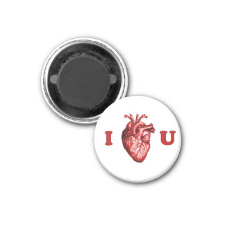 I Heart You Anatomical Heart - White & Red Magnet
