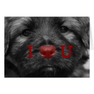 I Heart You Puppy Greeting Card