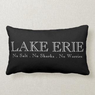 I heat Lake Erie Lumbar Pillow