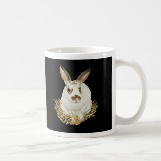 I HELPED SAVE CLEMENTINE! COFFEE MUGS