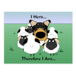 I Herd....Therefore I Am Postcard