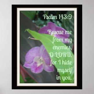 I Hide Myself in You