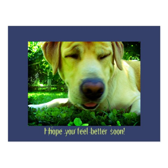 I Hope You Feel Better Soon Postcard Zazzlecom