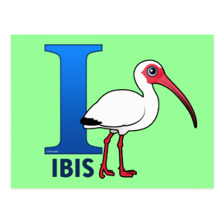 I is for Ibis Postcard